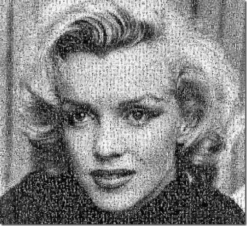 Crear fotos de mosaico 19